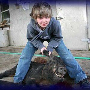 Wild Boar Hunt Report: January 21st, 2008