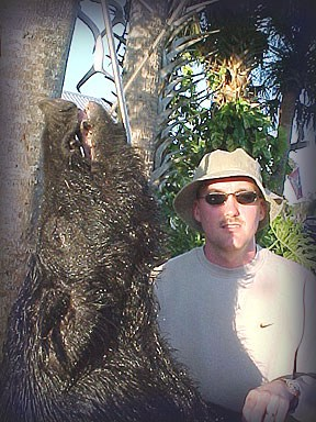 Wild Boar Hunt Report: March 2nd, 2005