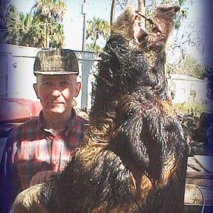 Wild Boar Hunt Report: February 6th, 2006