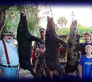 Wild Boar Hunt Report: March 23rd, 2002