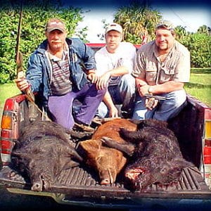 Wild Boar Hunt Report: April 18th, 2001