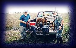 Wild Boar Hunt Report: February 11th, 2002