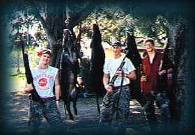 Wild Boar Hunt Report: April 16th, 2001