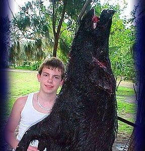 Wild Boar Hunt Report: February 22nd, 2003