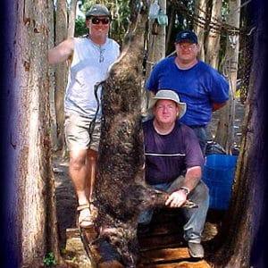 Wild Boar Hunt Report: April 24th, 2004