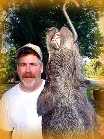 Boar Seaver Randy 9 2 00